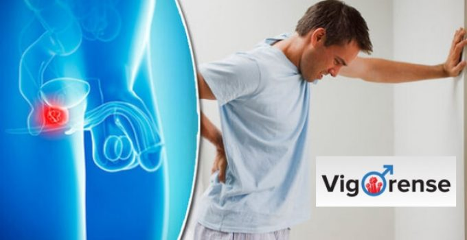 vigorense capsules, man, prostate gland