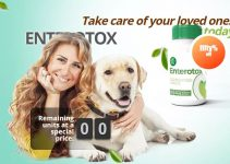 Enterotox Review – Organic Pills That Tackle Parasites & strengthen Immunity in 2021!